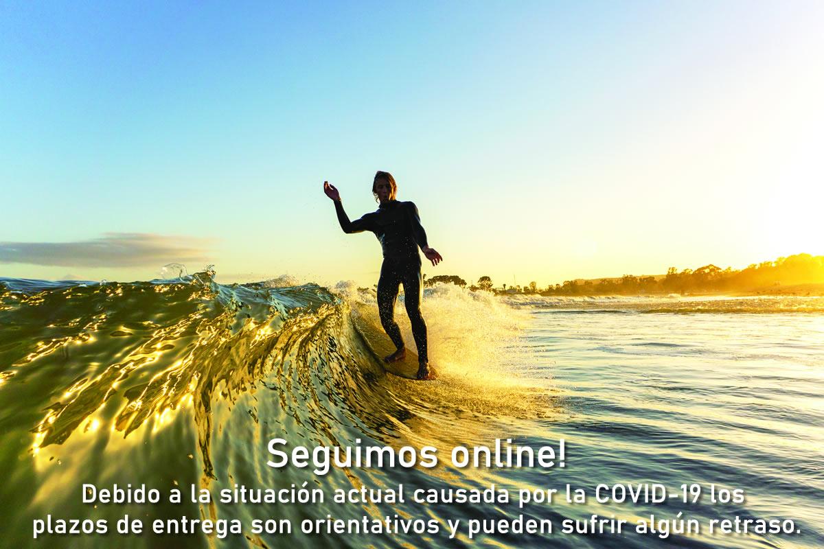 Tienda Online Surfing
