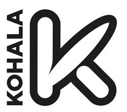 Kohala Paddle surf